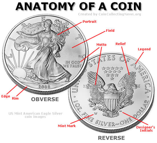 Coin Anatomy & Terms