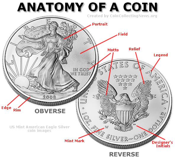 Coin Anatomy