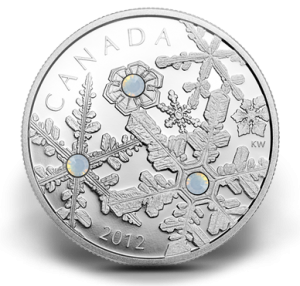 2012 Holiday Snowstorm Silver Coin (Royal Canadian Mint image)